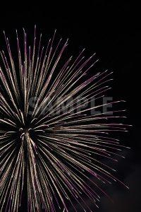 紫色の打ち上げ花火の写真・フォト素材