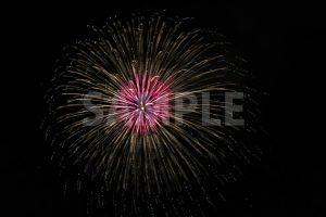 ピンクと黄色の打ち上げ花火の写真・フォト素材