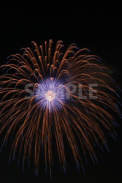 オレンジと青の打ち上げ花火の写真・フォト素材