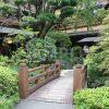 日本庭園の写真・フォト素材