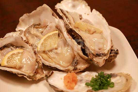 生牡蠣の写真・フォト素材