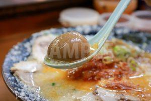 ラーメンの煮玉子写真・フォト素材